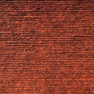 Pangolin Taş Panel – Stego